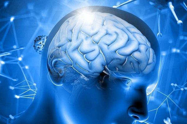 طراحی و ساخت باتری لیتیوم یون برای ایمپلنت های مغزی