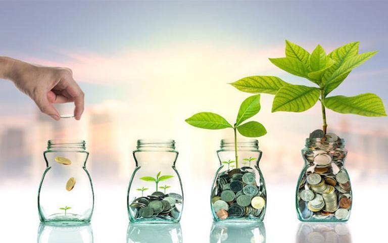سرمایه گذاری های خطرپذیر راه رسیدن به تولید پایدار هستند ، کسب وکارهای نوپا نیازمند یک سرمایه ریسک پذیر
