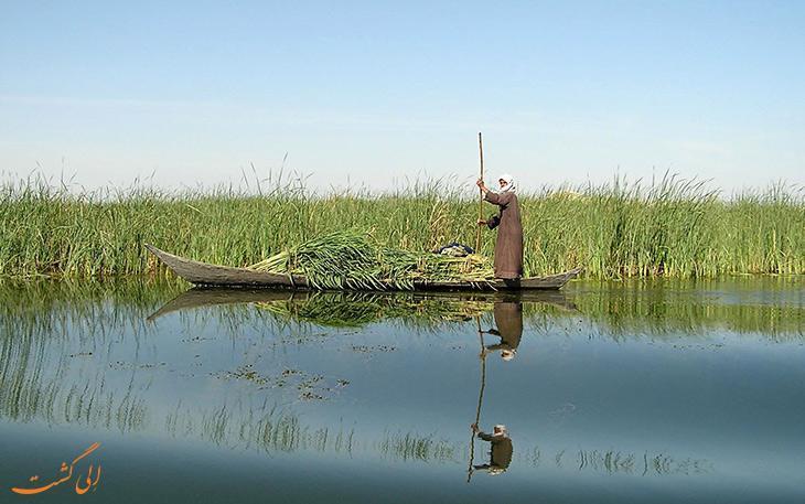 آب رودخانه هیرمند به تالاب خشکیده هامون رسید