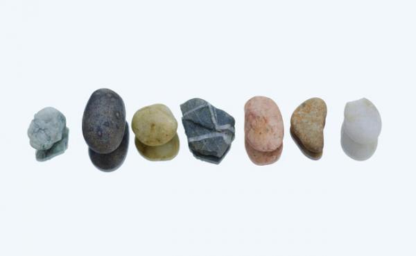 سنگ کلیه؛ انواع، علائم و عوامل ایجاد کننده