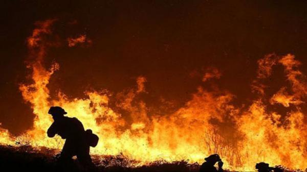 ادامه آتش سوزی های مهیب در جنگل های کالیفرنیا